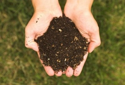 Importancia del abono orgánico.